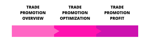 TRADE PROMOTION OVERVIEW 1.1